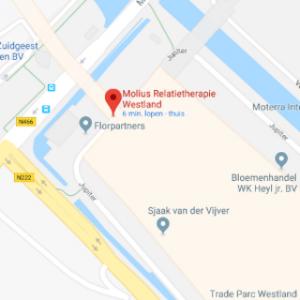 Google maps Molius Relatietherapie Westland